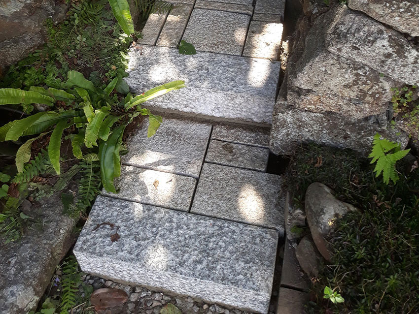 steps-before-after-20190726_162946-land